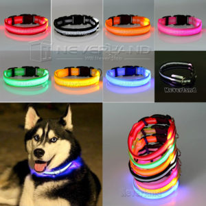 LEDs For Pets